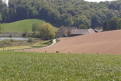 Bauernhof Papendelle